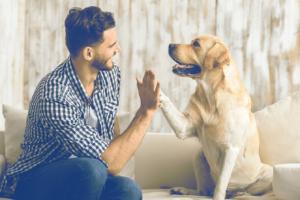 Regalos para amigos con mascotas